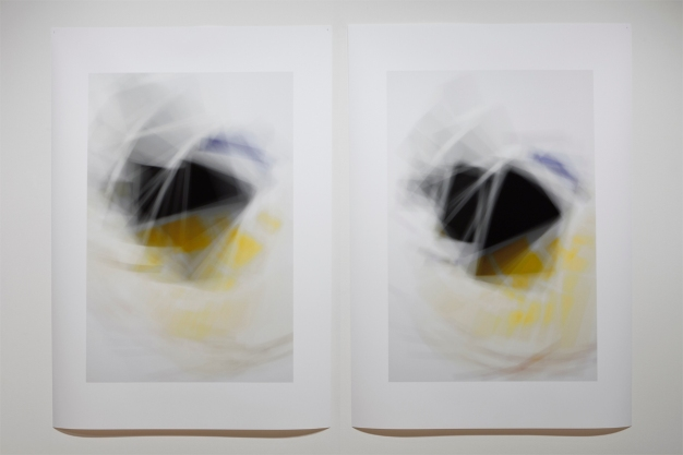 «Fading Icons (variations sur «Aéroplane en vol » de Kasimir Malévitch)», 2011, photographie (impression au jet d'encre sur papier chiffon), 2 éléments de 127 x 94 cm